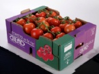 Carton Cherry Box