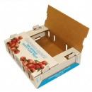 Cardboard Fruit Box